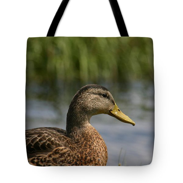 Tote Bag featuring the photograph Pondering A Swim by Denyse Duhaime