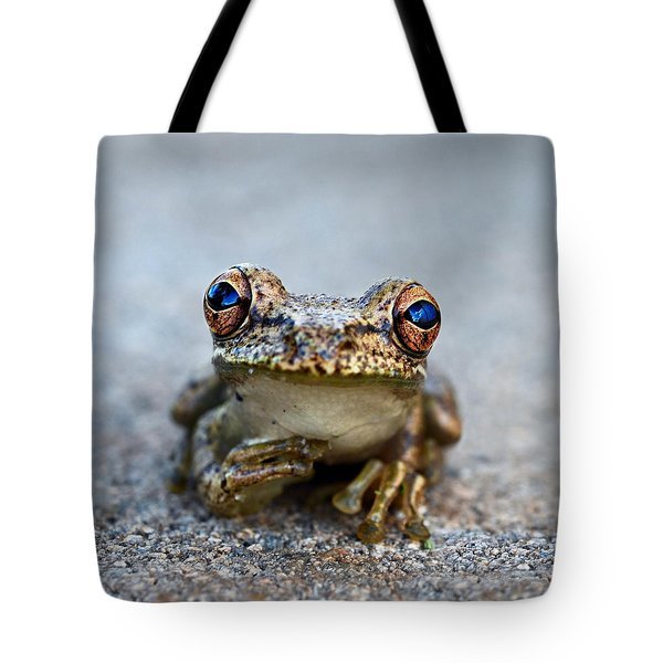 Pondering Frog Tote Bag by Laura Fasulo