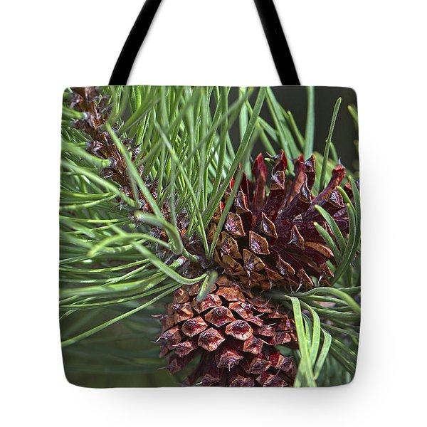 Ponderosa Pine Cones Tote Bag