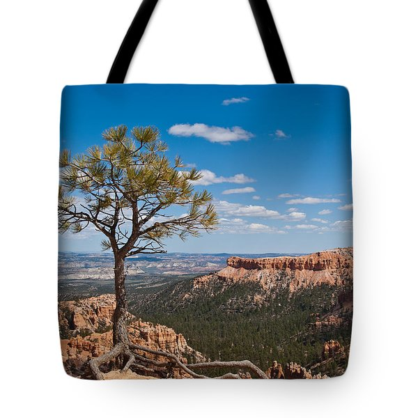 Tote Bag featuring the photograph Ponderosa Pine Tree Clinging To Life On Canyon Rim by Jeff Goulden