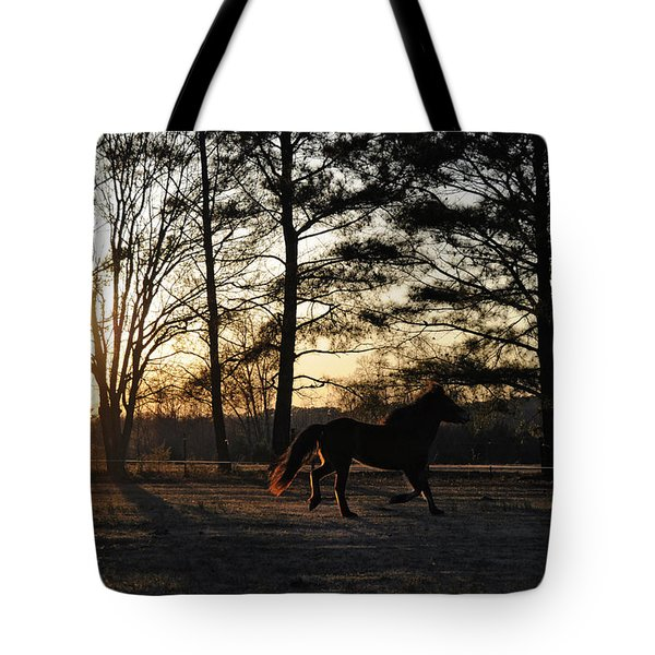 Pony's Evening Pasture Trot Tote Bag by Paulette B Wright