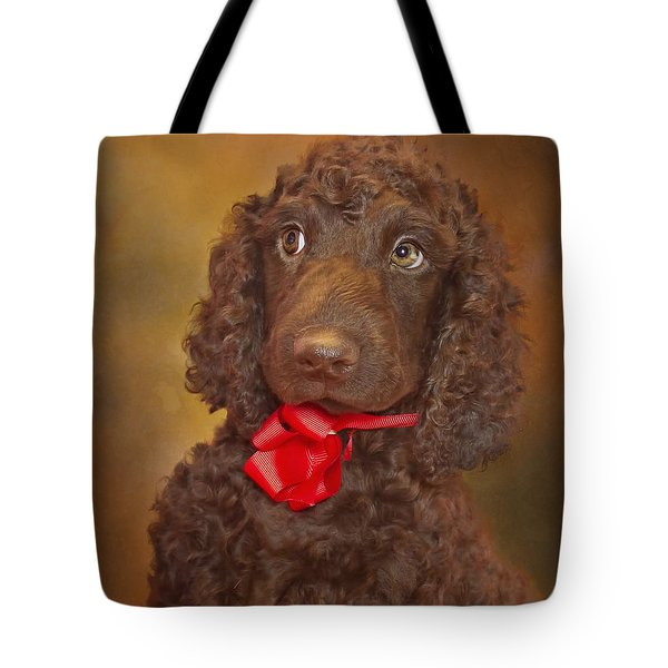 Pooka  Tote Bag by Brian Cross