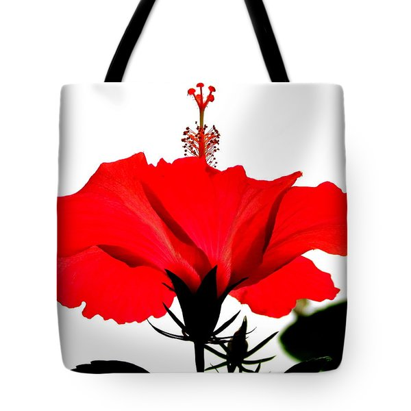 Pop Of Red Tote Bag by Ramona Johnston