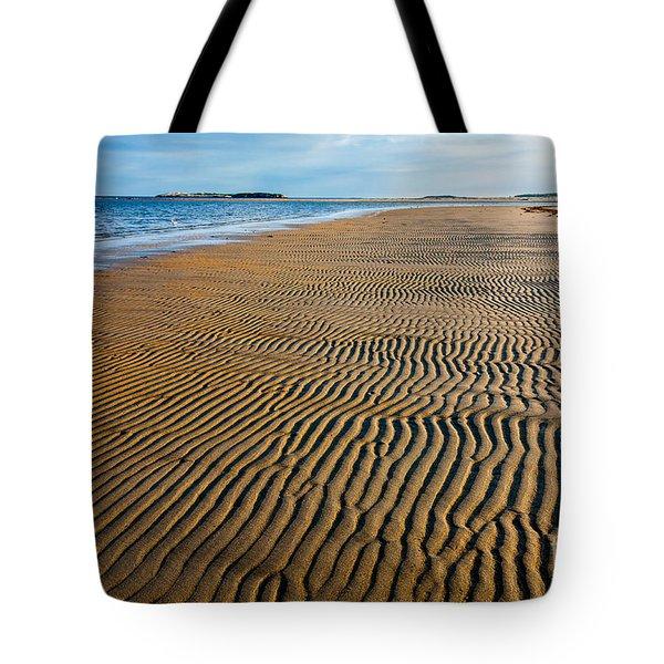 Popham Beach Tote Bag by Susan Cole Kelly