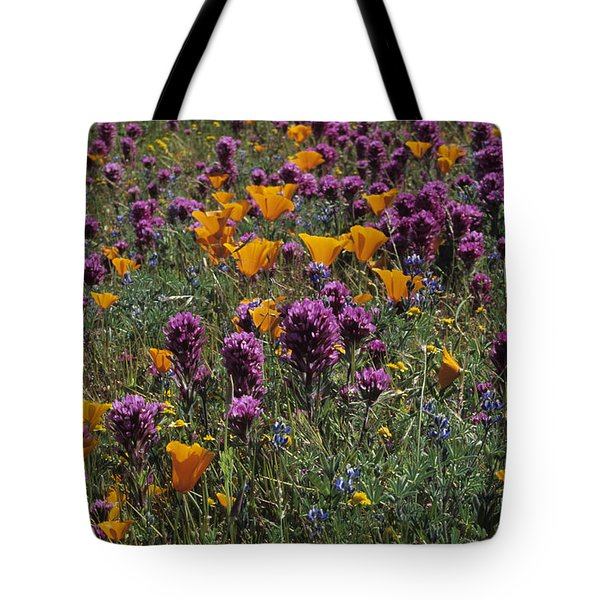 Poppies And Owl Clover Tote Bag