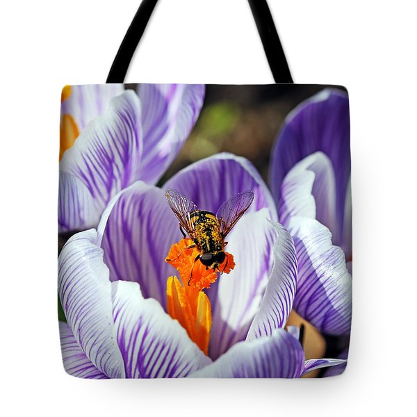 Tote Bag featuring the photograph Popping Spring Crocus by Debbie Oppermann