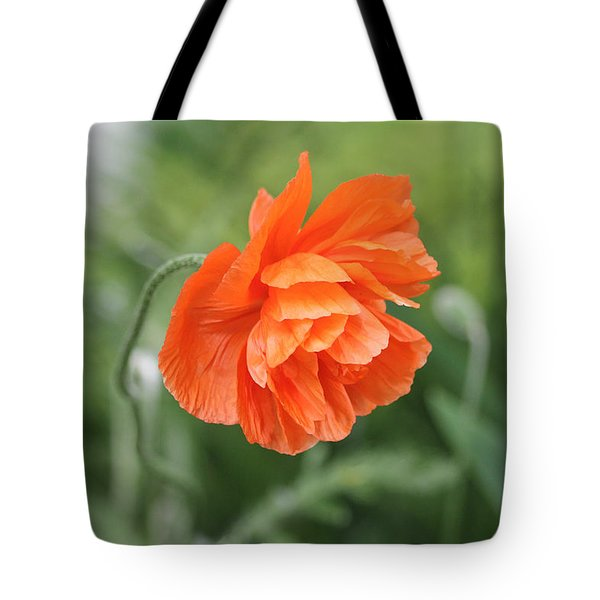 Poppy 2 Tote Bag