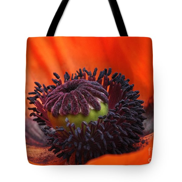 Poppy Tote Bag by Elaine Manley
