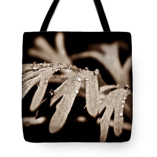 Poppy Foliage Tote Bag by Chris Berry