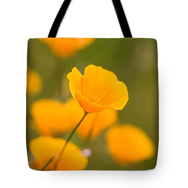 Tote Bag featuring the photograph Poppy I by Ronda Kimbrow