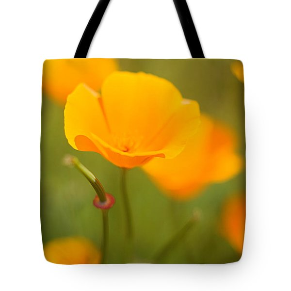 Tote Bag featuring the photograph Poppy II by Ronda Kimbrow