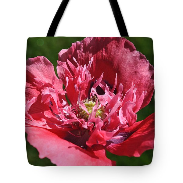 Poppy Pink Tote Bag by Jim Hogg