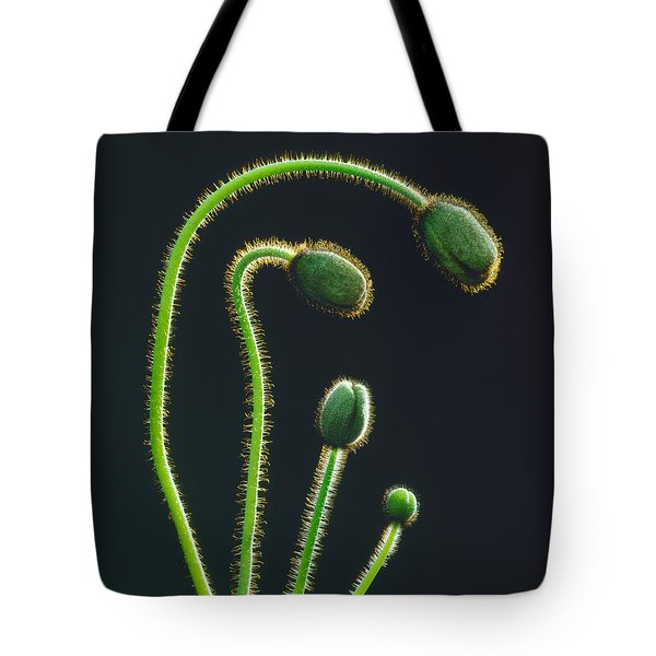 Poppy Buds Tote Bag by Martin Konopacki