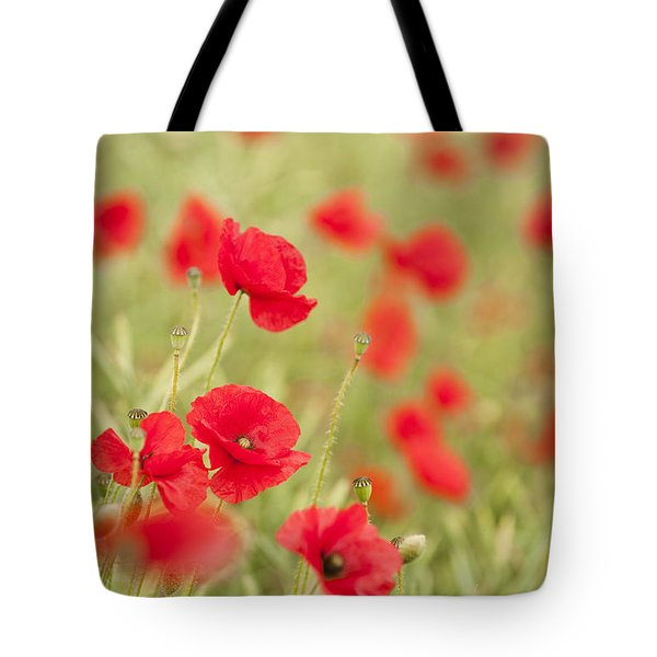 Poppy Red Tote Bag by Anne Gilbert