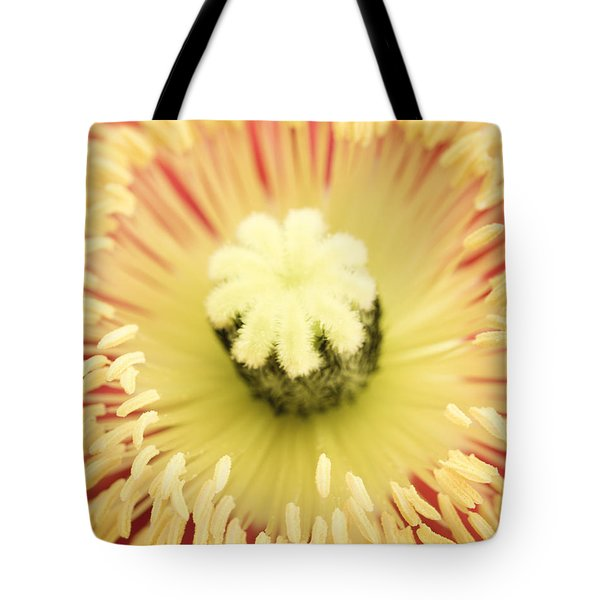 Poppy Sunburst  Tote Bag by Priya Ghose