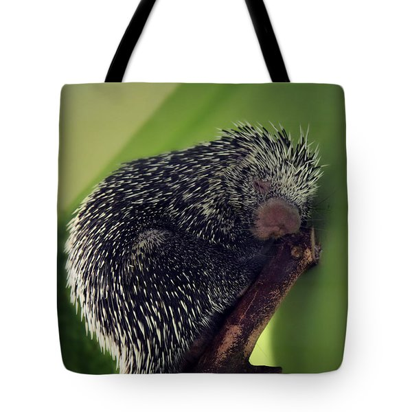 Porcupine Slumber Tote Bag by Melanie Lankford Photography