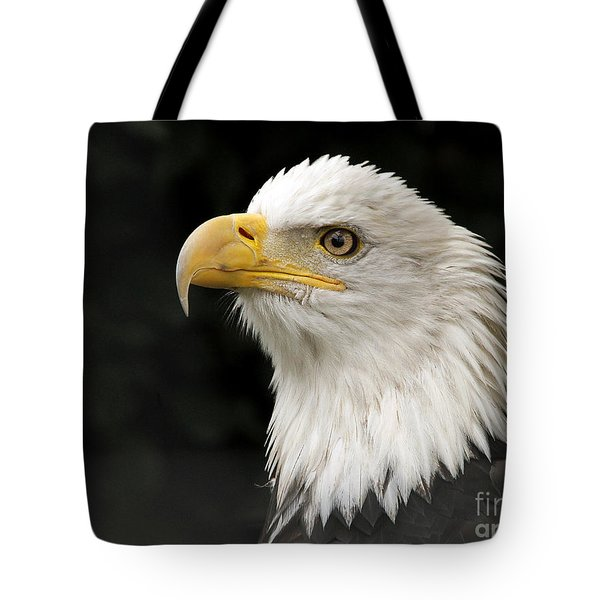 Tote Bag featuring the photograph Portrait Of A Bald Eagle by Inge Riis McDonald