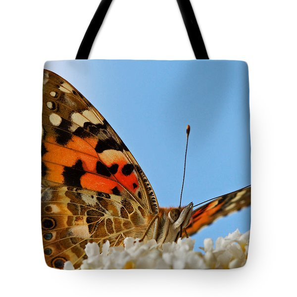Portrait Of A Butterfly Tote Bag