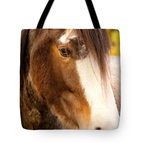 Portrait Of A Clydesdale Tote Bag