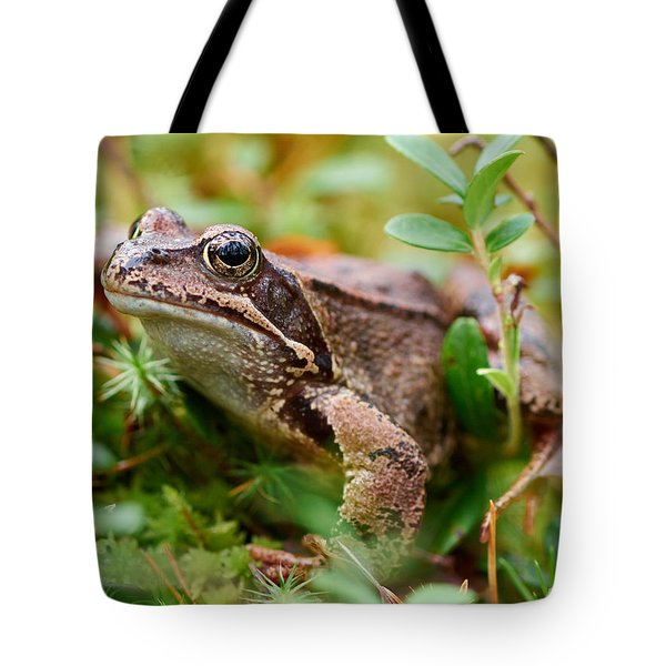 Portrait Of A Frog Tote Bag by Jouko Lehto