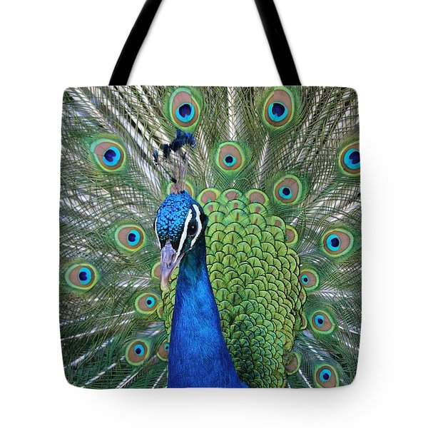 Portrait Of A Peacock Tote Bag by Diane Alexander
