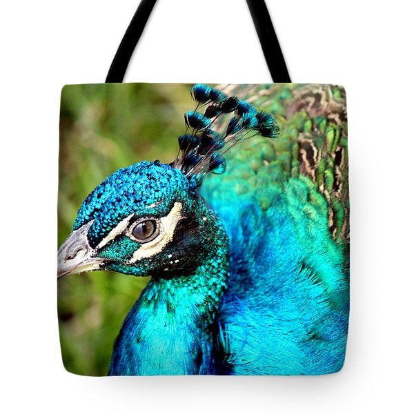 Tote Bag featuring the photograph Portrait Of A Peacock by Kathy  White