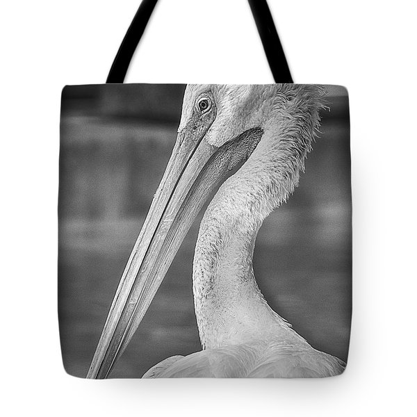 Portrait Of A Pelican Tote Bag by Jon Woodhams