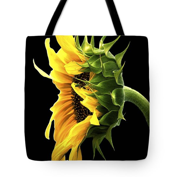 Portrait Of A Sunflower Tote Bag by Gwyn Newcombe
