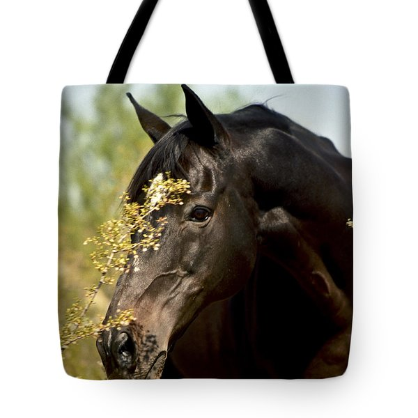 Portrait Of A Thoroughbred Tote Bag by Kathy McClure