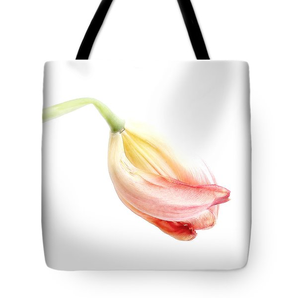 Portrait Of A Tulip In Yellow And Pink Tote Bag by Louise Kumpf