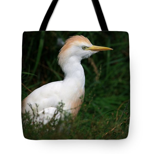 Portrait Of A White Egret Tote Bag
