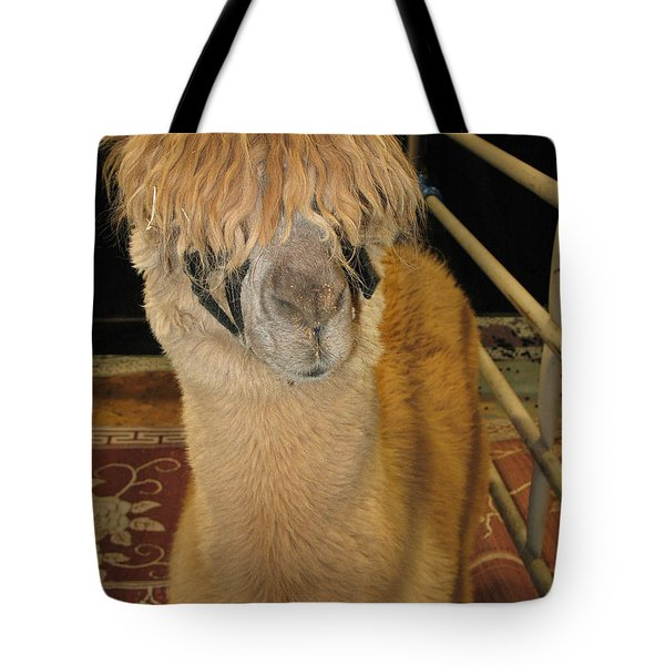 Tote Bag featuring the photograph Portrait Of An Alpaca by Connie Fox