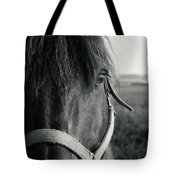 Portrait Of Horse In Black And White Tote Bag