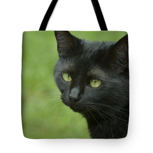Portrait Of Satin Tote Bag