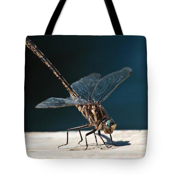 Posing Dragonfly Tote Bag