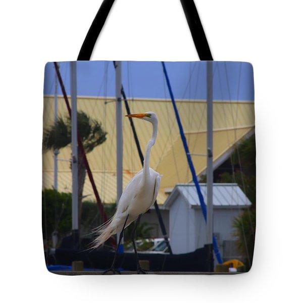Posing Egret Tote Bag by Debra Forand