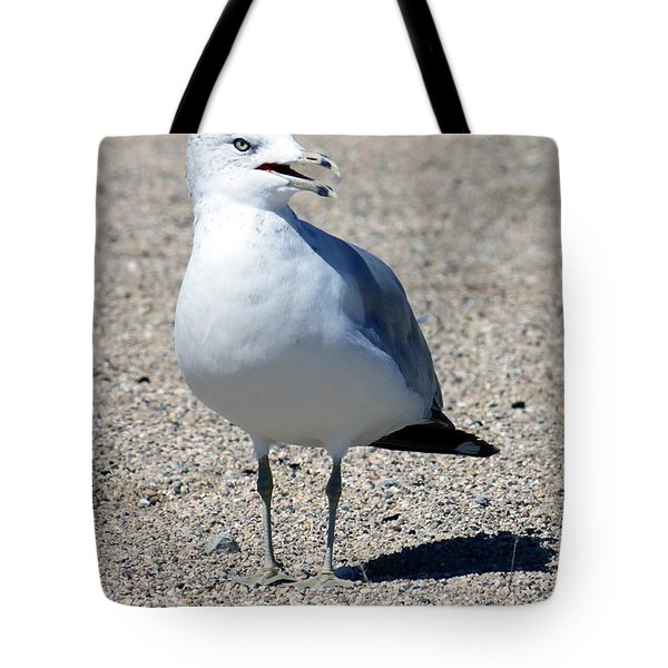 Tote Bag featuring the photograph Posing Gull by Debbie Hart