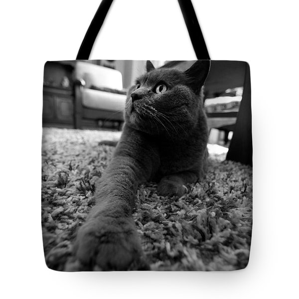Tote Bag featuring the photograph Posing by Laura Melis