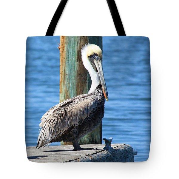 Posing Pelican Tote Bag