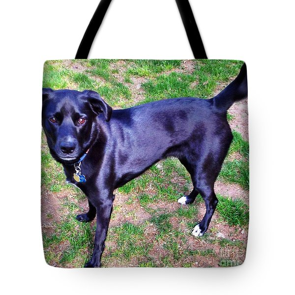 Posing Take The Picture Please Tote Bag by Judy Palkimas