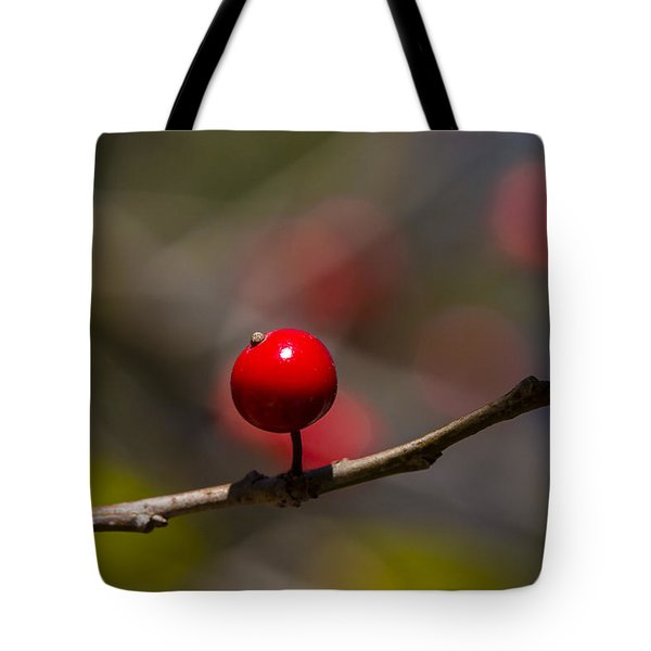 Possumhaw Fruit Abstraction Tote Bag
