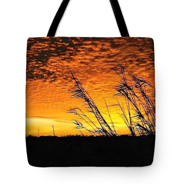 Post Hurricane Rita At Dockside In Beaumont Texas Usa Tote Bag by Michael Hoard