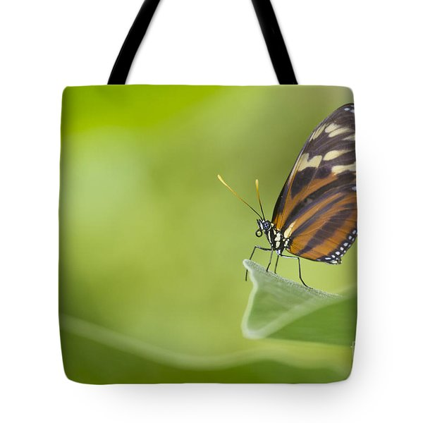 Tote Bag featuring the photograph Postman On A Leaf by Bryan Keil