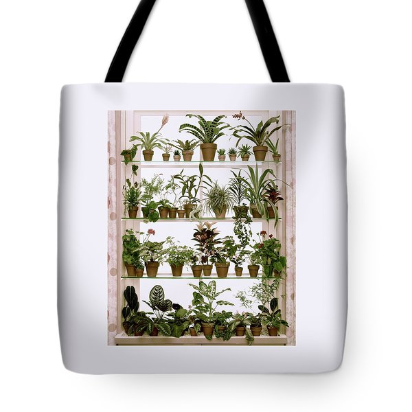Potted Plants On Shelves Tote Bag