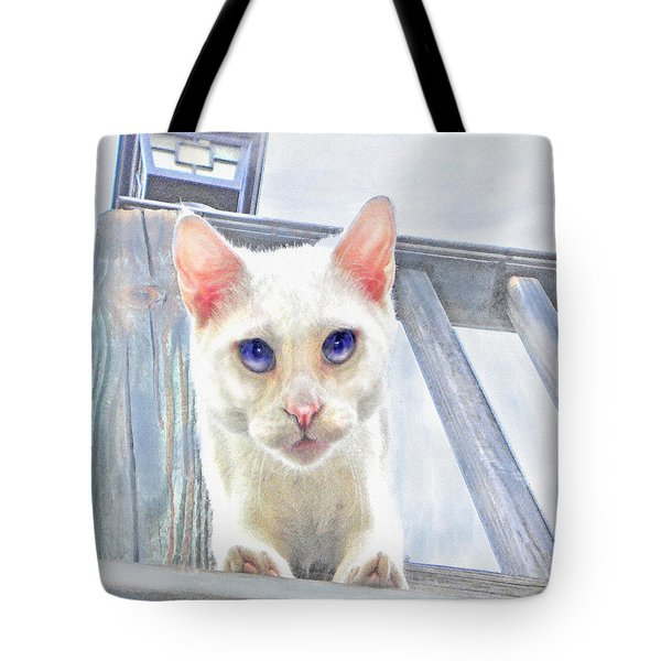 Tote Bag featuring the digital art Pounce by Jane Schnetlage