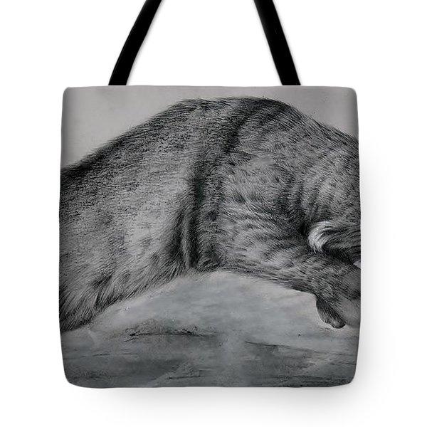 Pounce Tote Bag by Jean Cormier