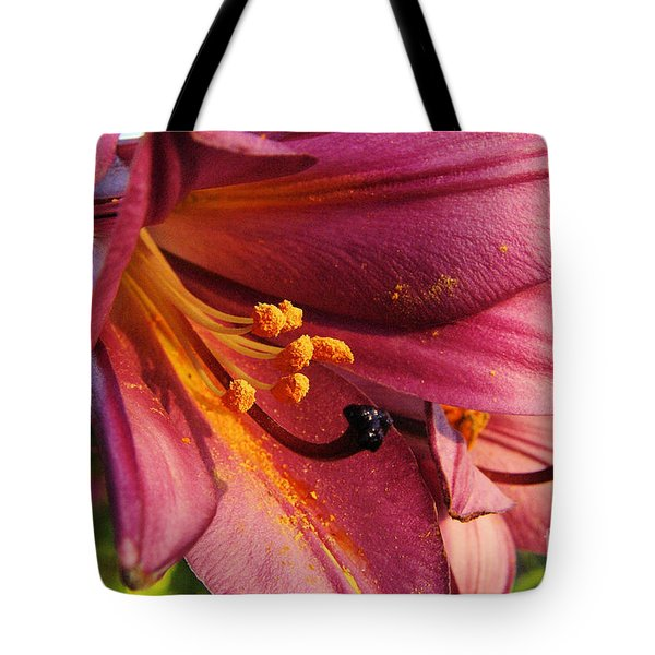 Powdered Pollen  Tote Bag by Jeff Swan