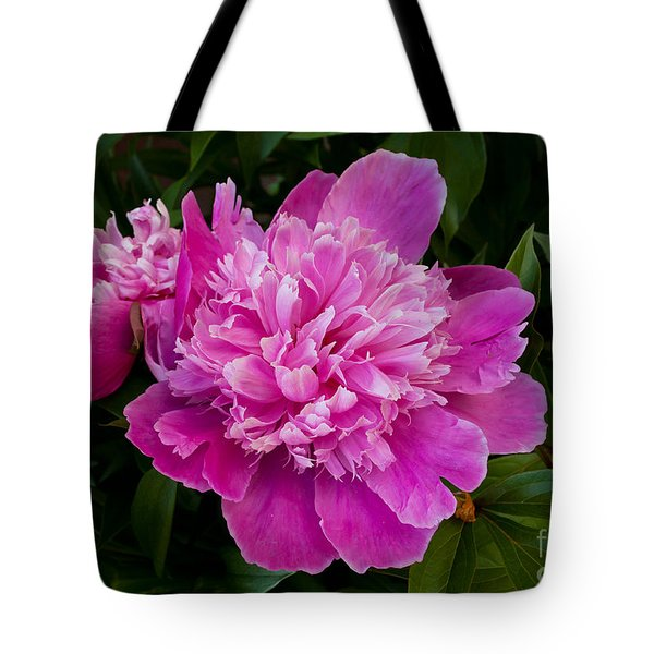 Powderpuff Peony Tote Bag by Lena Auxier