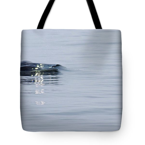 Tote Bag featuring the photograph Power In Motion by Marilyn Wilson