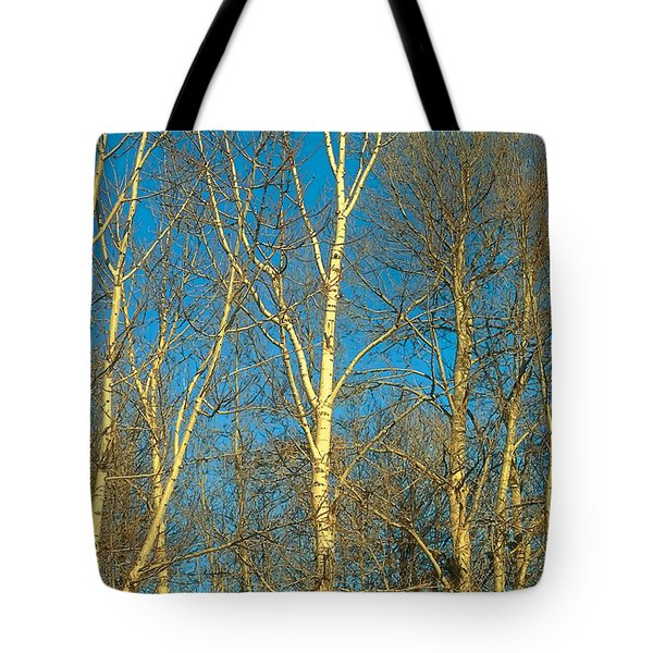 Prairie Autumn 9 Tote Bag by Terry Reynoldson